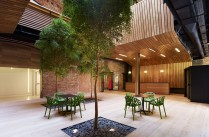 Architecture / Nouveaux bureaux pour la fondation Botn  Madrid par MVN Architects / Yooko: Design, dcoration &amp; architecture d&#039;intrieur